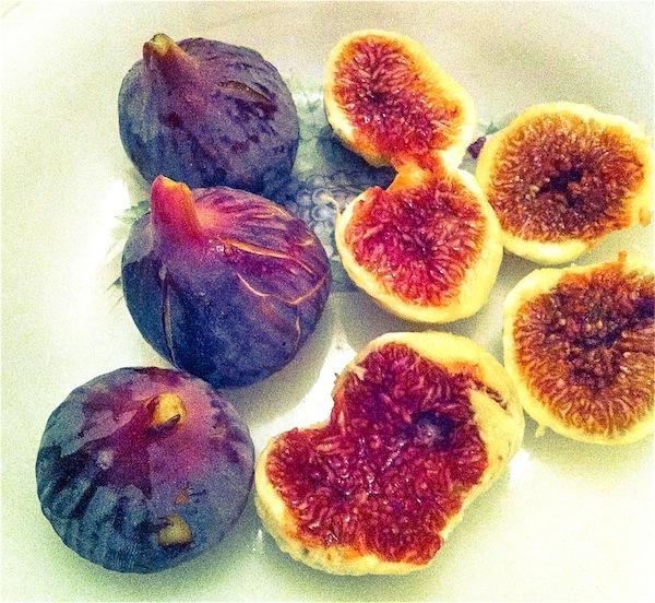 Fig tasting