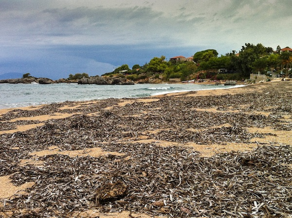 Beach at Stoupa covered in seaweed